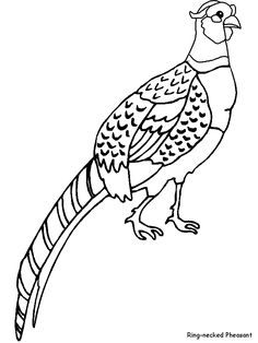 Pheasant pattern. Use the printable outline for crafts