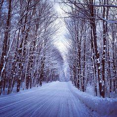 Michigan is a great winter destination