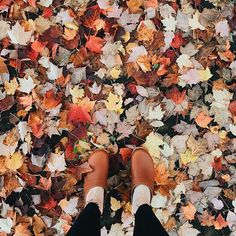 #fromwhereistand We couldn't resist another clogs & fallen leaves photo... @missjordankelley wearing classic tan clogs
