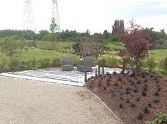 Haie de bambou fargesia rufa jardin exotique for Realisation jardin zen