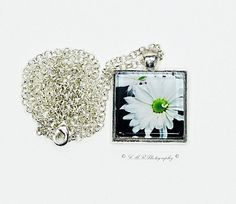 Photo Pendant Necklace White Daisy Pendant by LMRPhotography2, $15.50  #etsy #glasspendant #photopendant #flowerpendant #jewelry  https://www.etsy.com/shop/LMRPhotography2?ref=si_shop