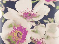 An innovative and stunning large scale floral design digitally printed with a soft, opalescent finish. Designer Fabrics & Wallcoverings, Upholstery Fabrics