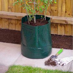 Grow Your Own-Tomato Grow Bag | Poundland