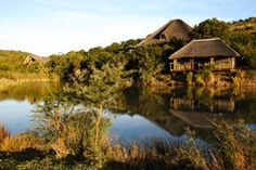 Shamwari Reserve is situated in the verdant bush along the Bushmans River, Dating back to the time when a multitude of game roamed wild and free, the reserve boasts five eco-systems, thus enabling the support of many forms of plant, animal and bird life. Game Reserve South Africa, Africa People, I Love House, Famous Gardens, Cape Town South Africa, Port Elizabeth, Garden Park, Take Me Home, African Safari