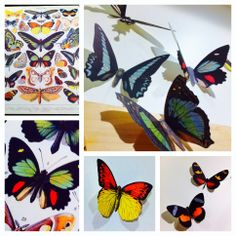 $5 dollar craft - Just cut out butterflies from Cavallini paper using an exacto knife, bend their wings and attach to the wall.  Great decorating idea for baby showers or Spring weddings!  #papercrafts #cavallini http://www.pinterest.com/ipickthethimble/crafternoons/