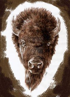 buffalo skull tattoos
