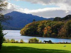 Lac Muckross, Parc National de Killarney, Kerry, Irlande