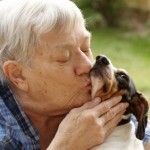 How Caregivers Can Use Pet Therapy to Care for Their Loved One. Known as Animal-Assisted Therapy (AAT), there is a growing movement to increase animal/patient interactions for health and wellness benefits.