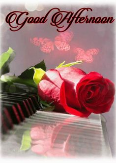 Animated Rose On Piano Good Morning Good Morning Beautiful Flowers, Good Morning Images Flowers, Good Morning Beautiful Images, Beautiful Roses, Evening Greetings, Good Night Greetings, Morning Greetings Quotes, Gud Morning Images, Good Morning Picture