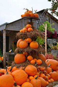 Impressive Autumn Garden Decor Ideas  Ready for Halloween !!!