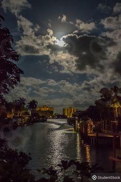 Night on the Lagoon on @studentstock