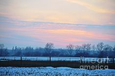 Country Backyards, Winter Sunset, White Envelopes, Fine Art America, Greeting Cards, Peace, Wall Art, Travel, Beautiful
