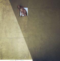 Theron Humphrey - Maddie On Things