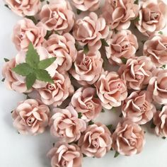 80 best paper flowers images on pinterest in 2018 flower wall these blush pink paper flowers are perfect for making your own paper flower backdrop mightylinksfo