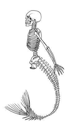 Mermaid Skeleton Art Print by Edge Of Sleep Kunst Tattoos, Tattoo Drawings, Art Drawings, Pencil Drawings, Mermaid Skeleton, Skeleton Art, Skeleton Tattoos, Bleistift Tattoo, Nautique Vintage