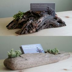 In stock driftwood business card holders with live moss detail! www.driftingconcepts.com