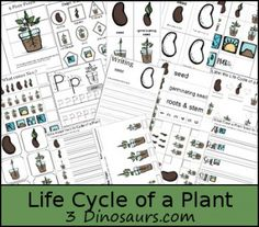 lifecycleplant-pack