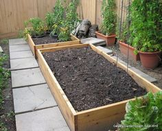 Raised garden bed for vegetables (vegetable planter boxes raised beds) Patio Garden, Pallets Garden, Front Yard Garden, Glass Garden, Raised Vegetable Gardens, Modern Garden, Backyard, Vegetable Garden Raised Beds, Vegetable Planter Boxes