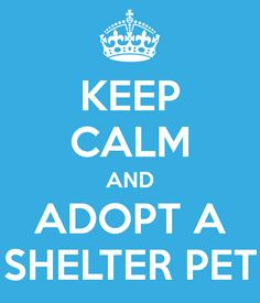 National Adopt a Shelter Pet Day is April 30th!
