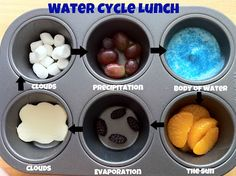 Bug and Monkey Mama: Muffin Tin Monday: The Water Cycle