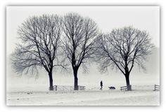 Walking the dog. Door communitylid Annemaaike - NG FotoCommunity ©