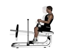 Learn how to do seated calf raise using correct technique for maximum results. Exercises with the knees bent, such as seated calf raises, work the soleus. Calf Raises Exercise, Calf Exercises, Power Rack, Training Equipment, Calves, Bodybuilding, Legs, Workout, Fitness