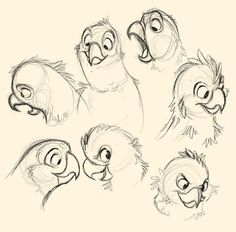 Bird beaks - various angles reference - cartoon birds, 2019 drawin Cartoon Bird Drawing, Parrot Cartoon, Parrot Drawing, Cartoon Birds, Cartoon Sketches, Animal Sketches, Bird Drawings, Animal Drawings, Drawing Sketches