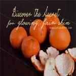 Ways to Use Orange Peels   Orange Peels for Glowing Skin