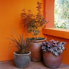 Use different gardening container sizes and use plants that will compliment the containers