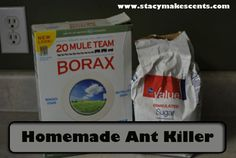 Best Homemade Natural Ant Killer 1 c. sugar, 1 T. borax, c. Serve to ants in lid--they'll take it back to nest and BOOM! no ants Diy Cleaning Products, Cleaning Solutions, Cleaning Hacks, Homemade Products, Cleaning Recipes, Cleaners Homemade, Diy Cleaners, Homemade Ant Killer, Insecticide