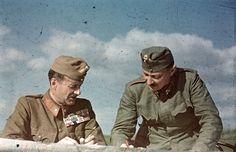 Венгерские офицеры у карты на Восточном фронте. Слева — генерал-майор, справа — полковник.