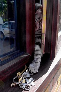 must get the keys....