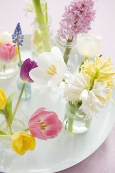 Single stem spring bulb flowers in tiny glass vases Welcome Spring, Spring Sign, Happy Spring, Spring Home, Hello Spring, Spring Colors, Spring Flowers, Bonsai Plante, Vase Transparent