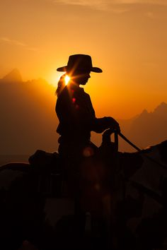 Cowgirl on her horse.  Silhouette photograph.