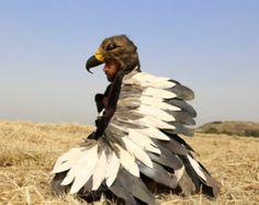 Disfraz de pájaro adulto o adolescente  alas Top y por Yatzeck