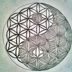 Divine Proportion plus ying yang Sacred Geometry Symbols, Spiritual Symbols, Geometric Drawing, Geometric Shapes, Flower Of Life Tattoo, Flower Of Life Pattern, Yin Yang Tattoos, Feng Shui, Celtic Patterns