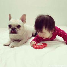 個人レッスン❤️ #frenchbulldog #frenchie #dog #daughter #babygirl #フレンチブルドッグ #女の子