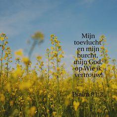 Telefoon achtergrond Psalm 91
