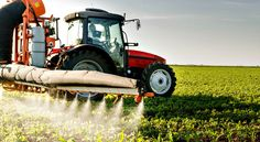 Monsanto's New GMOs Spawn Illegal Use of Toxic Herbicides | Farmers have to check what their neighbors are spraying—and whether it's legal.