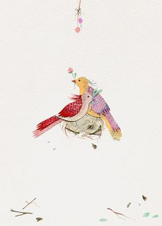 beautiful bird artwork
