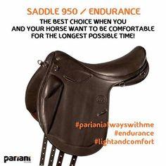 #saddle 950 / #endurance