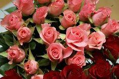 Flor rosada 35