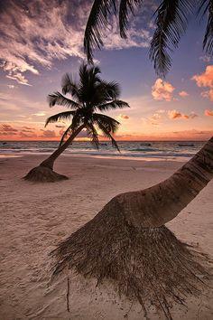 ~~Dos palms ~ beach sunrise, Tulum, Yucatan Peninsula, Mexico by Todd Wall~~ watching the sun come up on the beach. Tulum Mexico, Paradis Tropical, I Love The Beach, Jolie Photo, Riviera Maya, Ocean Beach, Tulum Beach, Beach Sunrise, Vacation Spots