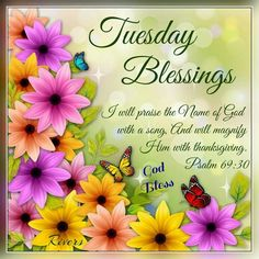 786 best tuesday blessingsgreetings images on pinterest tuesday italian quotes morning blessings good day m4hsunfo