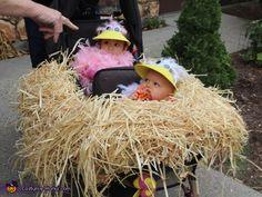 Baby Birds in their Nest - 2013 Halloween Costume Contest Twin Halloween, Halloween Parade, Baby Girl Halloween, First Halloween, Halloween 2013, Halloween Stuff, Farmer Halloween, Halloween Ideas, Halloween Crafts