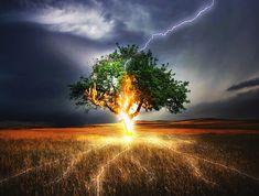 Blitz, Blitzeinschlag, Einschlag, Wetter, Unwetter