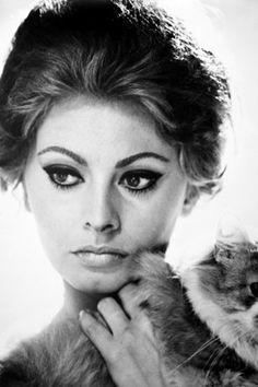 Sophia Loren Cat eye