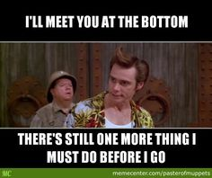 Ace Ventura Quote by pasterofmuppets - A Member of the Internet's Largest Humor Community Funny Movie Lines, Funny Movies, Good Movies, Best Movie Quotes, Tv Quotes, Jim Carey Funny, Ace Ventura Memes, Jim Carrey Quotes, Ace Ventura Pet Detective