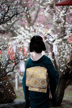 『梅乃』 Umeno Okiya : Photo