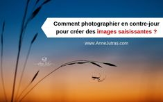 Images, Movies, Movie Posters, Photography, Shop, Learn Photography, Photography Classes, Artistic Photography, Photograph